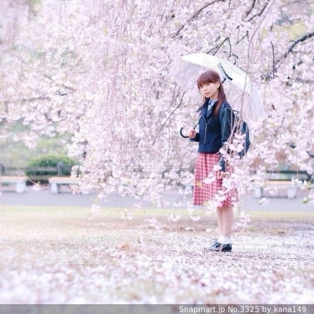 女性,1人,20代,ファッション,花,桜,傘,人物の写真素材
