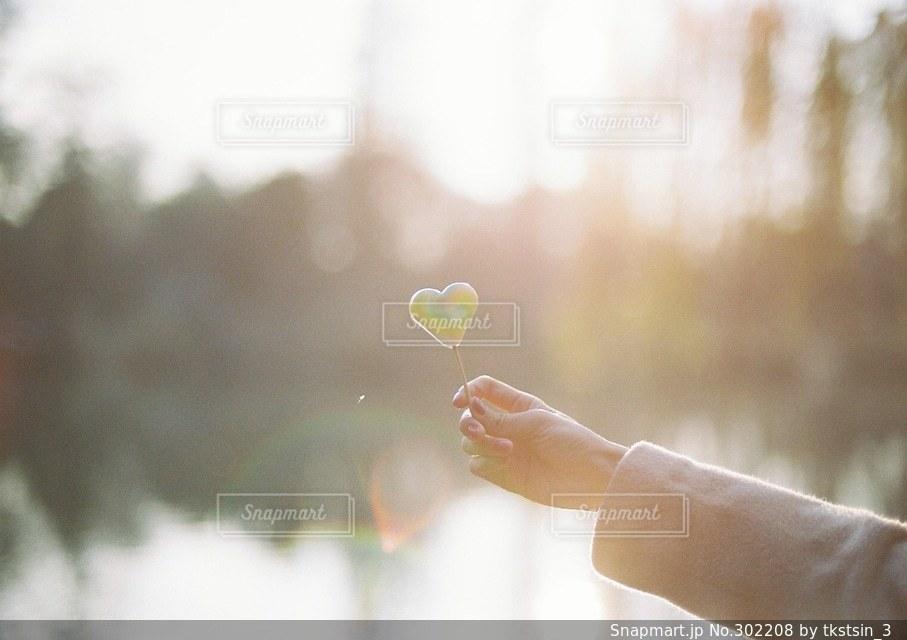 自然の写真・画像素材[302208]