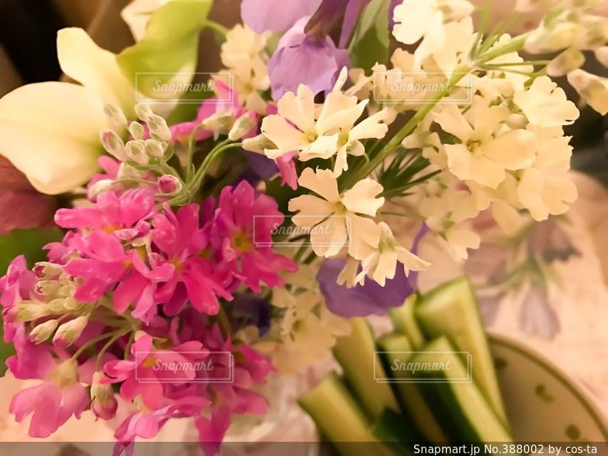 花,テーブルフォト,サクラ草