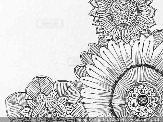 手書きの花のイラストのアップの写真画像素材1085641 Snapmart