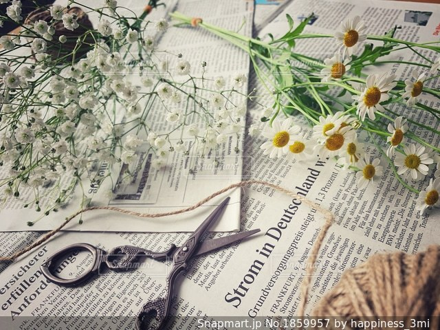デイジーとかすみ草のスワッグの写真・画像素材[1859957]