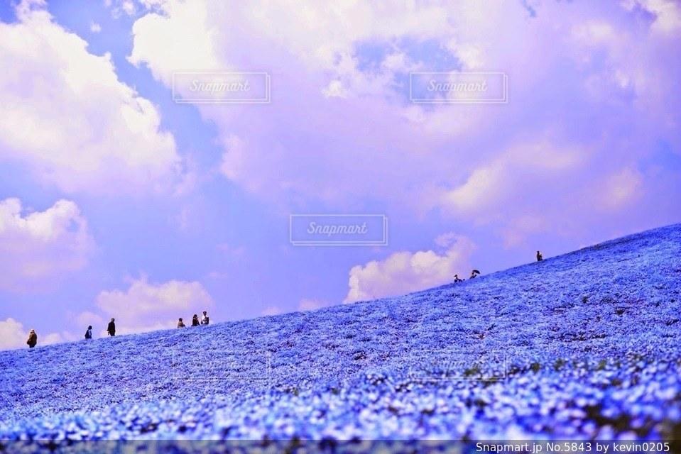 風景の写真・画像素材[5843]