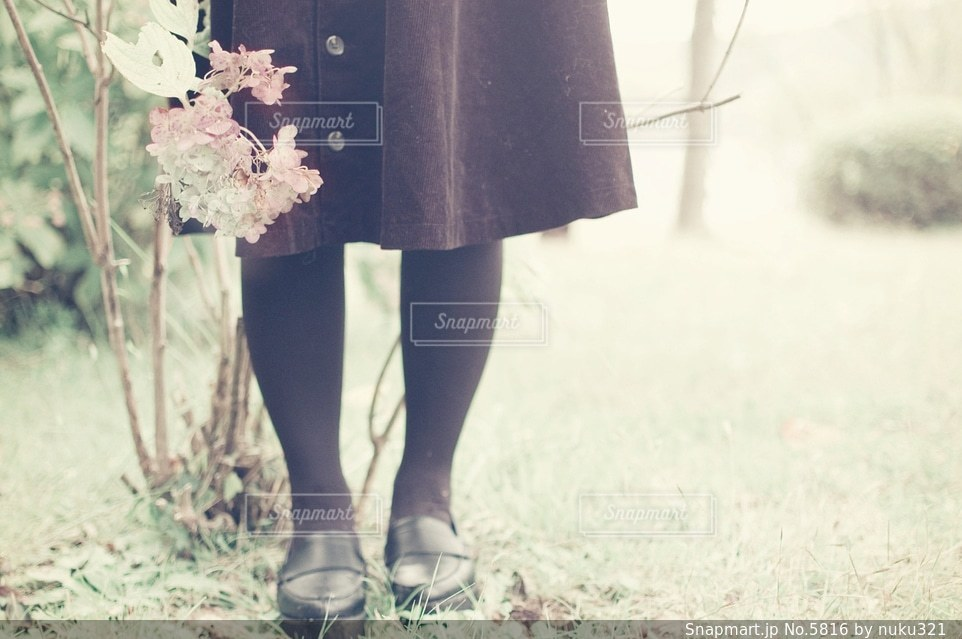 女性の写真・画像素材[5816]