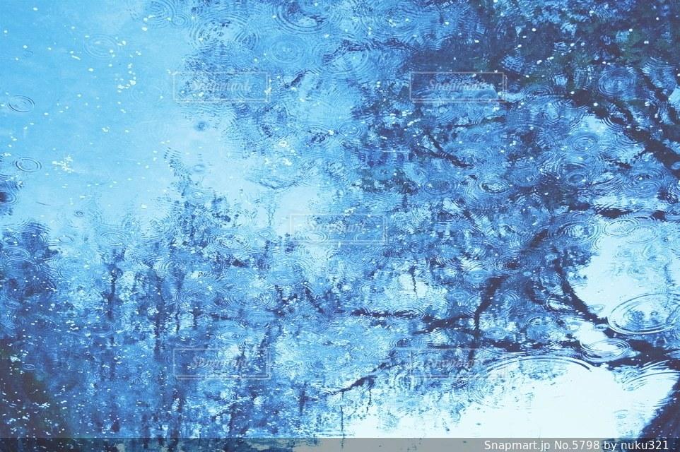 自然の写真・画像素材[5798]