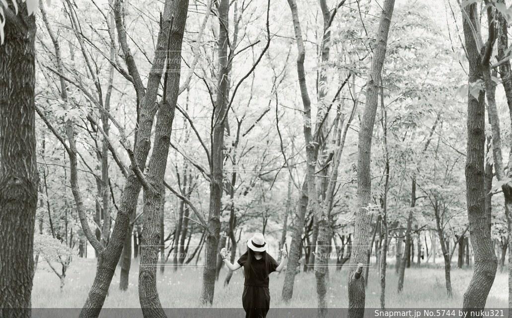 女性の写真・画像素材[5744]