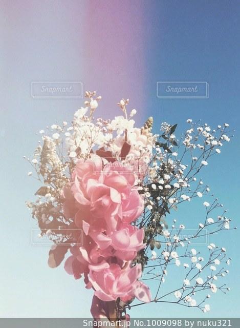 花の花束の写真・画像素材[1009098]