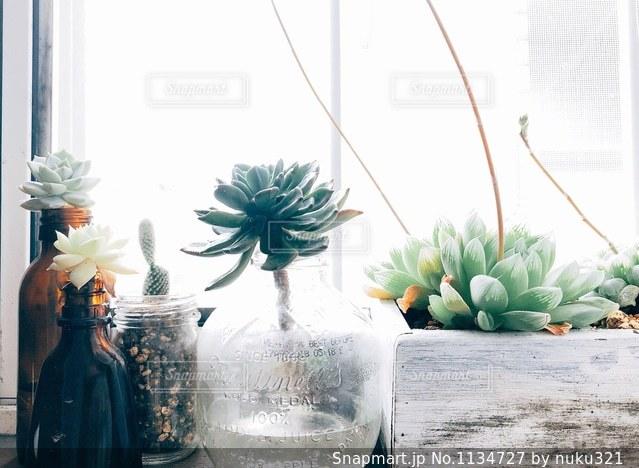 テーブルの上の花の花瓶の写真・画像素材[1134727]