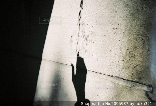 白い壁の接写の写真・画像素材[2095937]