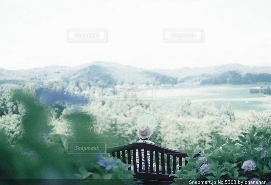 子どもの写真・画像素材[5303]