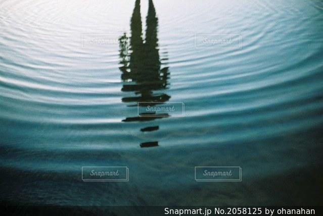 自然の写真・画像素材[2058125]