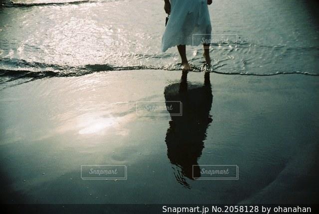 自然の写真・画像素材[2058128]