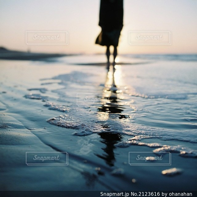 水の体の写真・画像素材[2123616]