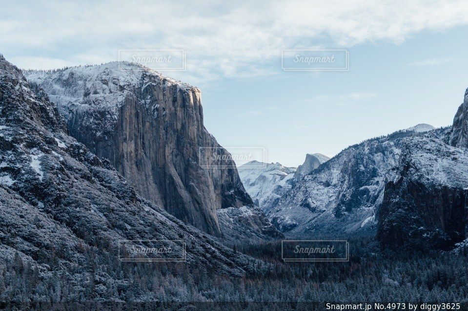 自然の写真・画像素材[4973]