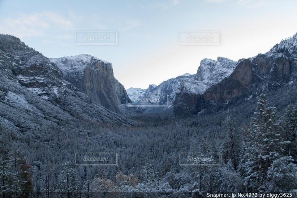 自然の写真・画像素材[4972]