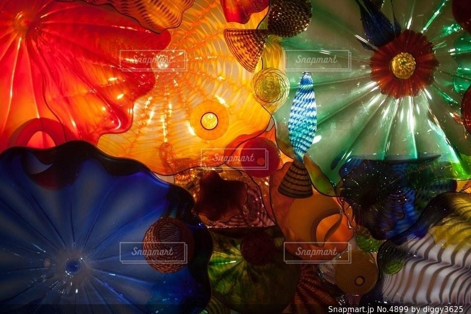 花の写真・画像素材[4899]
