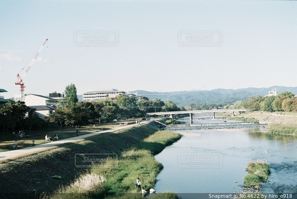 自然の写真・画像素材[4622]