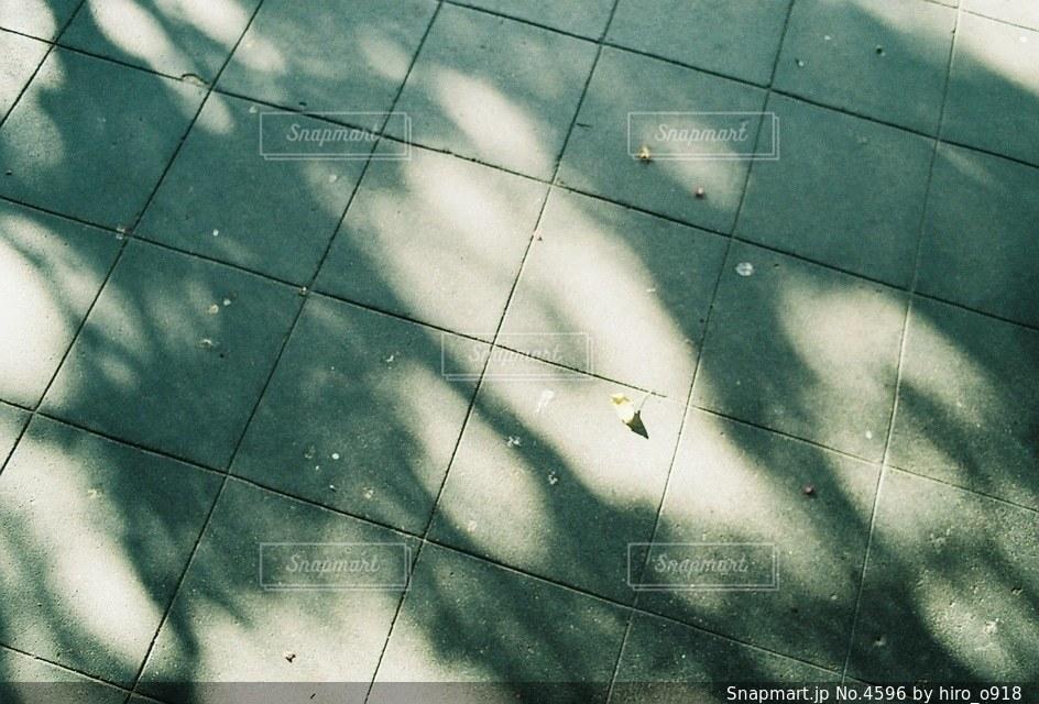 風景の写真・画像素材[4596]