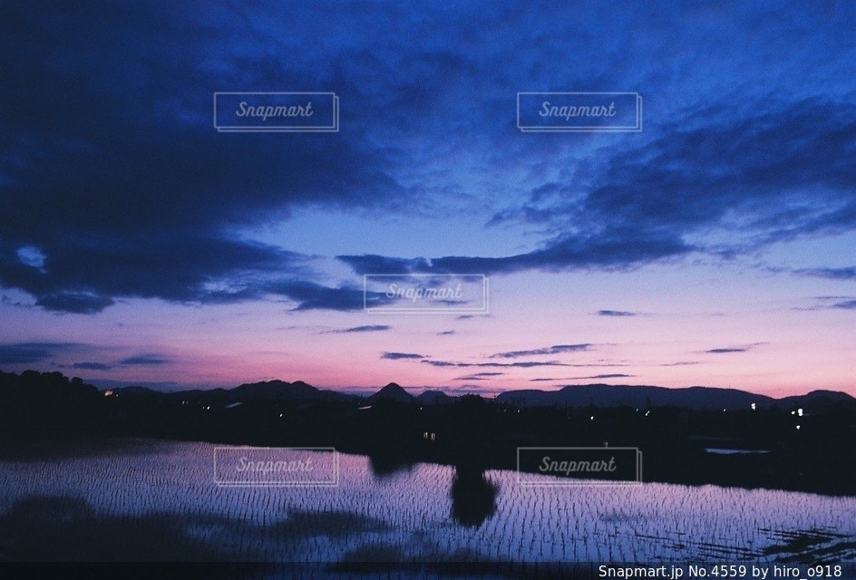 自然の写真・画像素材[4559]