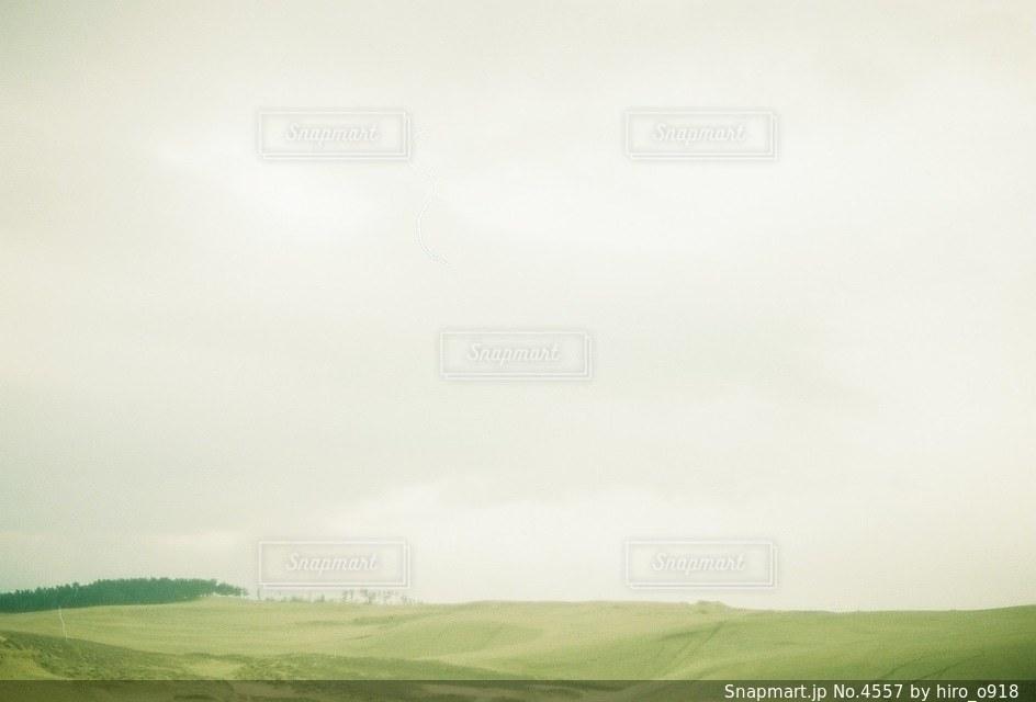 自然の写真・画像素材[4557]