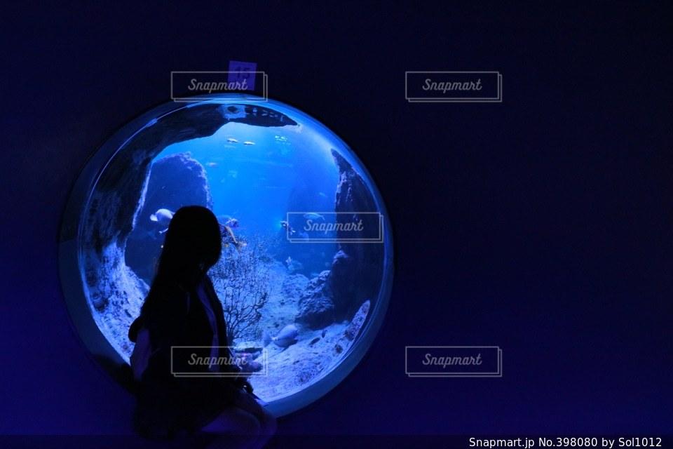 海,青,水族館,女の子,高校生,江ノ島,水槽
