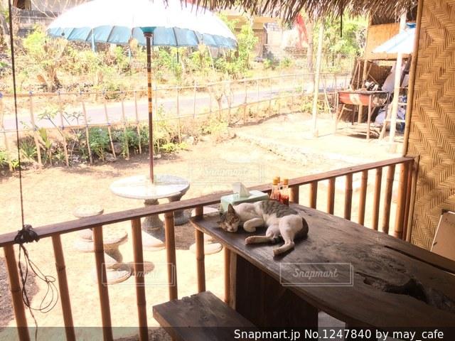 撮影地→バリ、ヌサペニダ島の写真・画像素材[1247840]