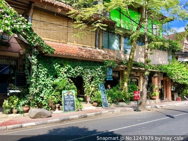 バリ、ウブドの街並み。の写真・画像素材[1247979]