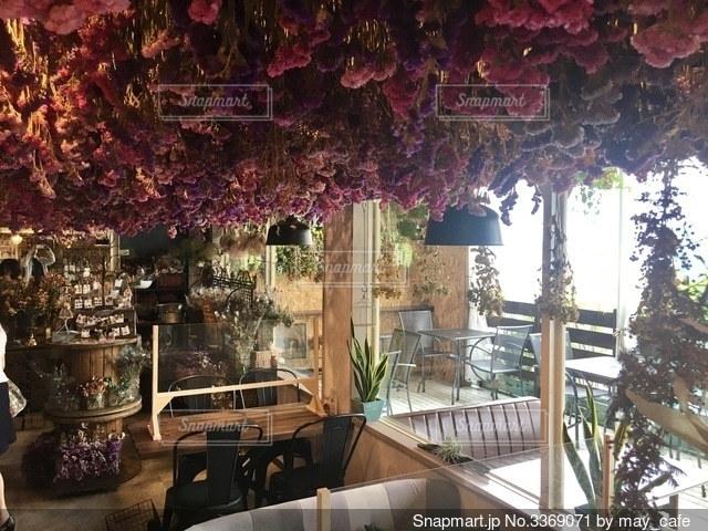 お洒落なカフェ店内の写真・画像素材[3369071]
