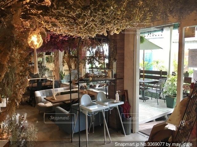 家具と大きな窓があるカフェの写真・画像素材[3369077]