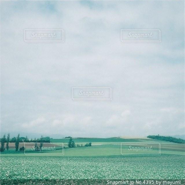 風景の写真・画像素材[4395]