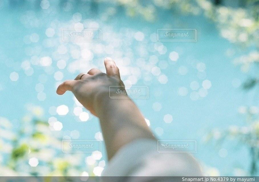 腕の写真・画像素材[4379]