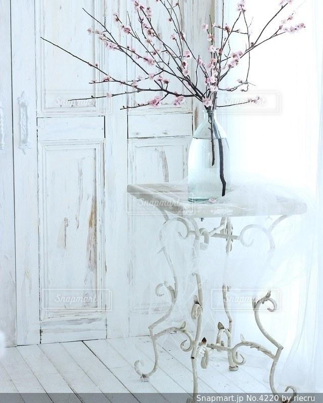 桜の写真・画像素材[4220]