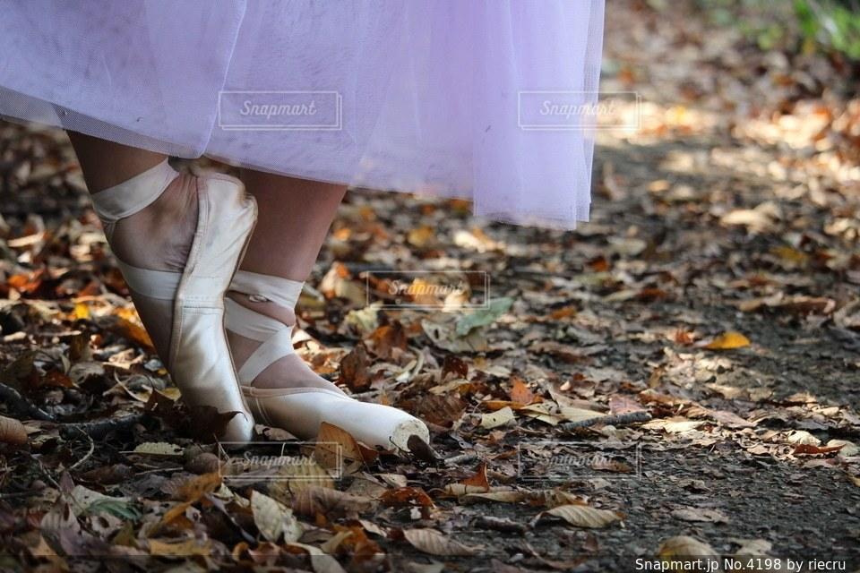 足の写真・画像素材[4198]