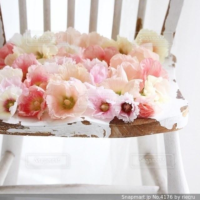花の写真・画像素材[4176]