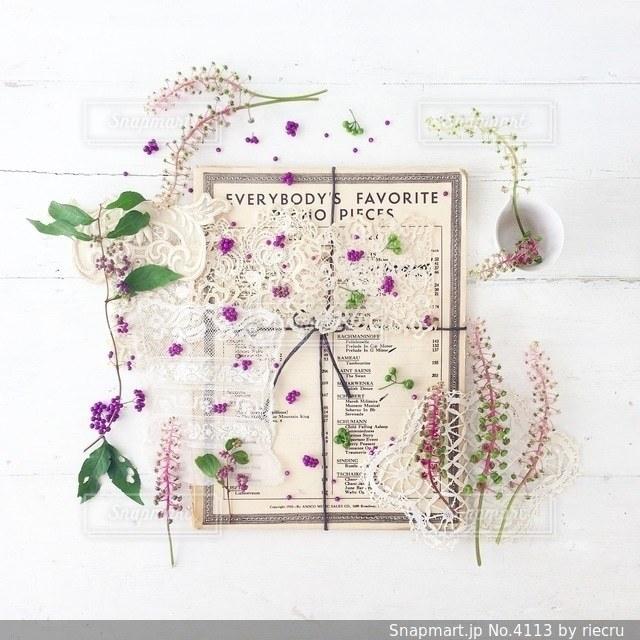 植物の写真・画像素材[4113]