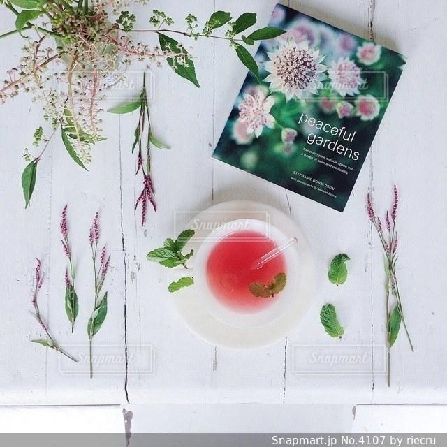 植物の写真・画像素材[4107]