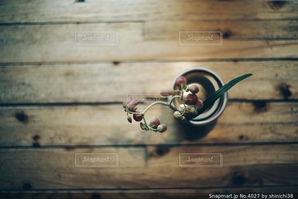 植物の写真・画像素材[4027]