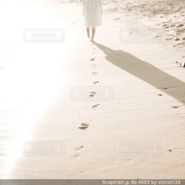 女性の写真・画像素材[4003]
