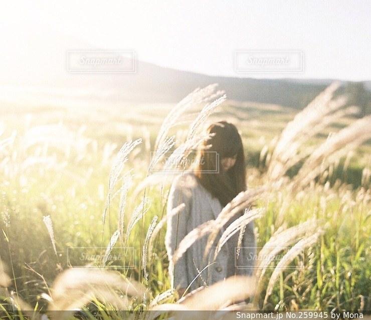 阿蘇のすすきと女性の写真・画像素材[259945]