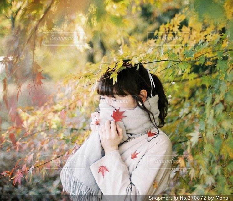 もみじと女性の写真・画像素材[270872]