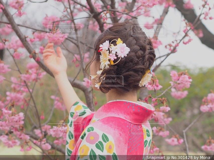 初春と着物の女性の写真・画像素材[301428]