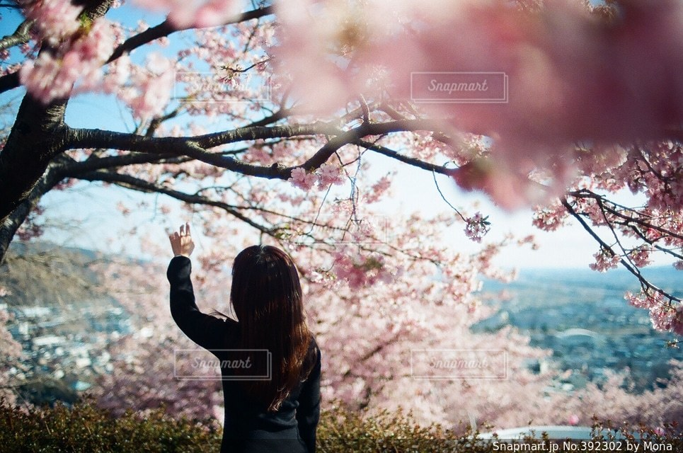 桜と女性の写真・画像素材[392302]