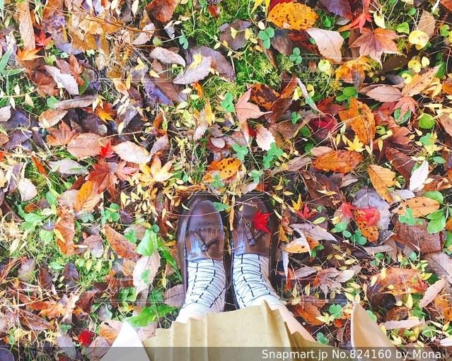秋の足元の写真・画像素材[824160]