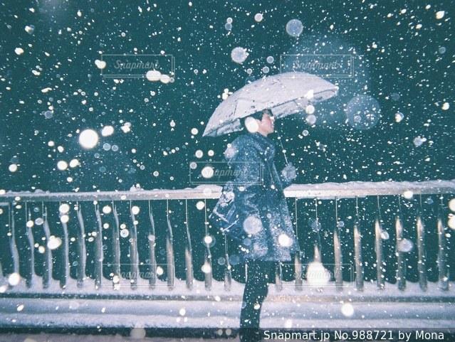 大雪の日の写真・画像素材[988721]
