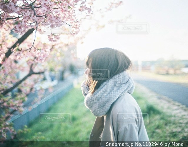 早咲きの桜と女性の写真・画像素材[1102946]