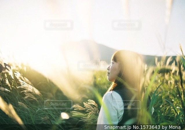 初秋のススキと女性の写真・画像素材[1573643]