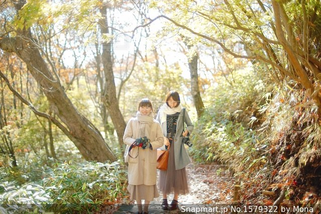 秋とカメラ女子の写真・画像素材[1579322]
