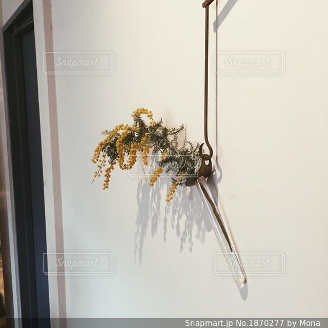 ミモザのドライフラワーの写真・画像素材[1870277]