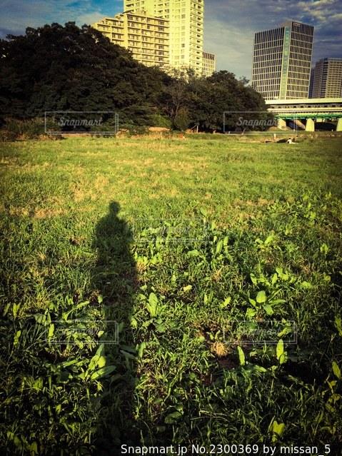 二子玉川駅近くの多摩川の河原に映る夕陽に照らされた自分の影の写真・画像素材[2300369]