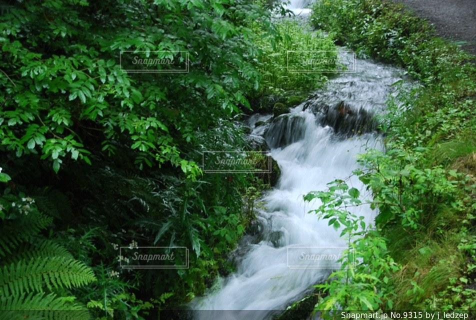 自然の写真・画像素材[9315]
