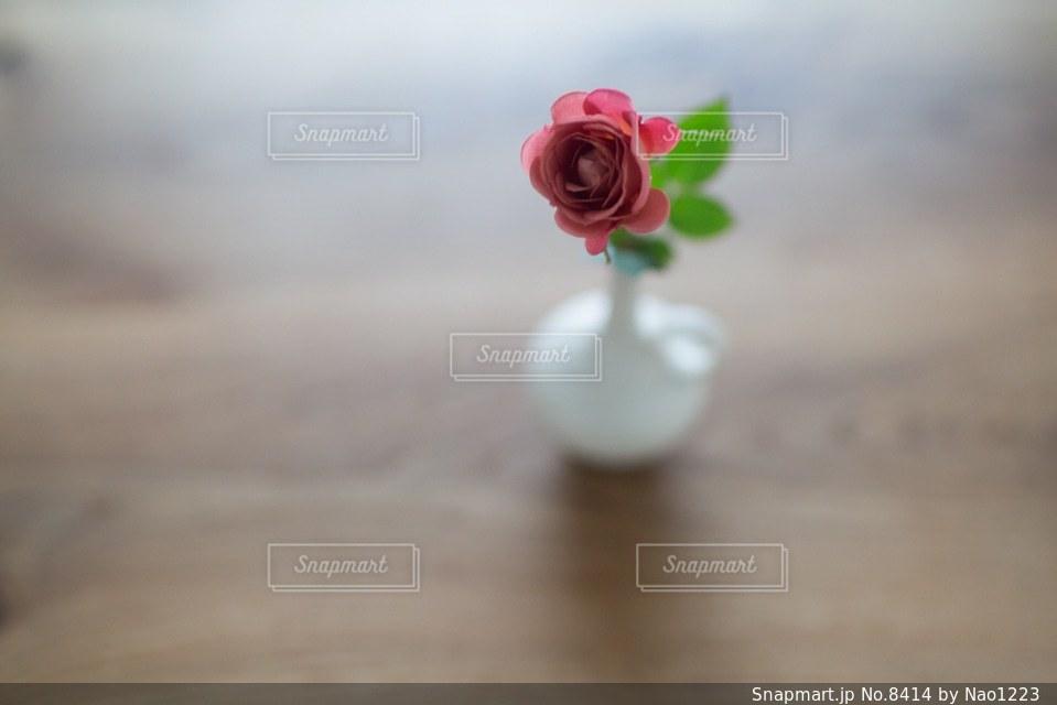花の写真・画像素材[8414]